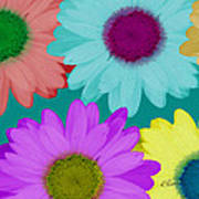 Oversize Daisies Two Poster