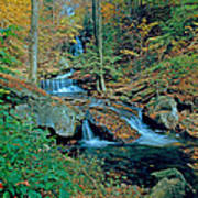 Ozone Falls And Rapids Poster