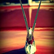 Packard Swan 3 Poster