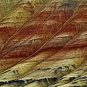 Painted Hills Lines Poster