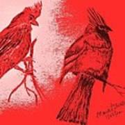 Pair Of Cardinals Poster