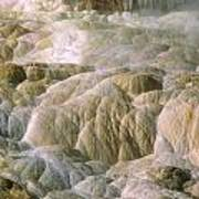 Palette Spring In Mammoth Hot Springs Poster