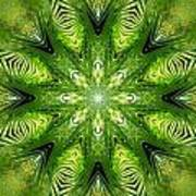 Palm Kaleidoscope 11 Poster