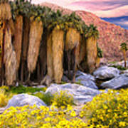Palm Oasis And Wildflowers Poster