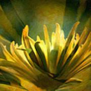 Palm Sunday Poster