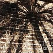 Palm Tree Cup Poster