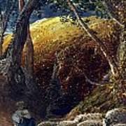 Palmer: Apple Tree Poster