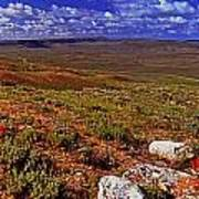 Panoramic View Of Fossil Butte Nm Valley Poster