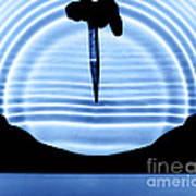 Parabolic Reflection Poster
