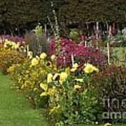 Parisian Park Morning Garden Poster