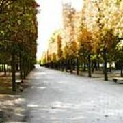 Parisian Park Walkway Poster