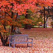 Park Bench In Fall Poster