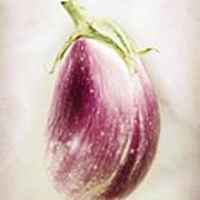 Pastel Eggplant Poster