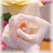 Pastel Petals Poster