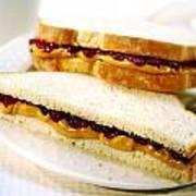 Pbj Sandwich Poster
