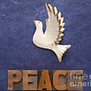 Peace Word With Dove Poster