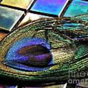 Peacock Feather On Tiles Poster