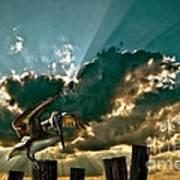 Pelican Sky Poster