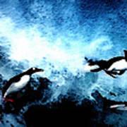 Penquin Joy Play  In Huge Waves Poster