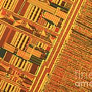 Pentium Computer Chip Poster