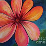 Petals Poster by Carolyn Weir