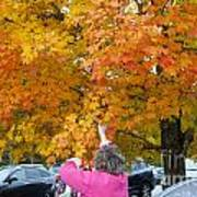 Picking Autumn Leaves 3982 Poster