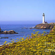 Pigeon Point Lighthouse California Coast Poster