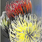 Pincushion Poster