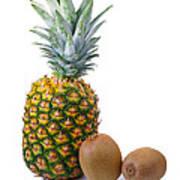 Pineapple And Kiwis Poster