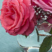 Pink And Aqua Roses Poster