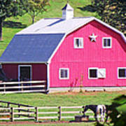Pink Barn In The Summer Poster