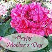 Pink Geranium Greeting Card Mothers Day Poster