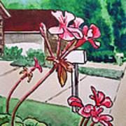Pink Geranium Sketchbook Project Down My Street Poster