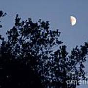 Pink Half Moon Photograph Poster