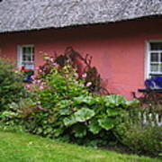 Pink Irish Cottage Poster
