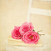 Pink Roses Laying On A Book Poster