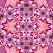 Pink Splash Mandala Abstract Poster