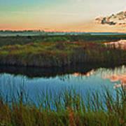 Pink Swamp Sunrise Poster