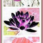 Plant Material Poster