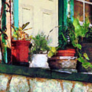 Plants On Porch Poster