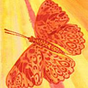 Pleasure Butterfly Poster