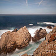 Point Lobos Number One Poster