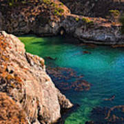 Point Lobos State Reserve California Poster by Utah Images