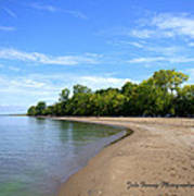 Point Pelee Beach Poster