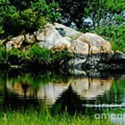 Pool In Marsh At Mystic Ct Poster