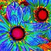 Pop Art Daisies 2 Poster