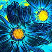Pop Art Daisies 7 Poster