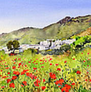 Poppies At Las Hortichuelas Poster