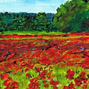 Poppy Fields Tuscany Poster