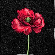Poppy Flower, Woodcut Poster